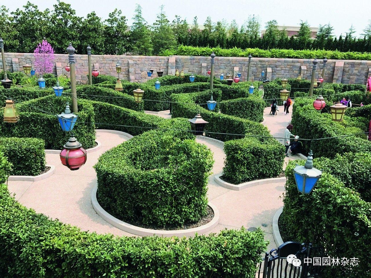 植物是造园的一种材料,风景园林师将形态各异的植物搭配在迪士尼