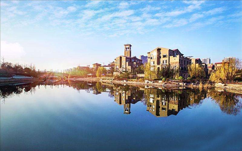 浐河绿地国际生态城绿化栽植与养护工程