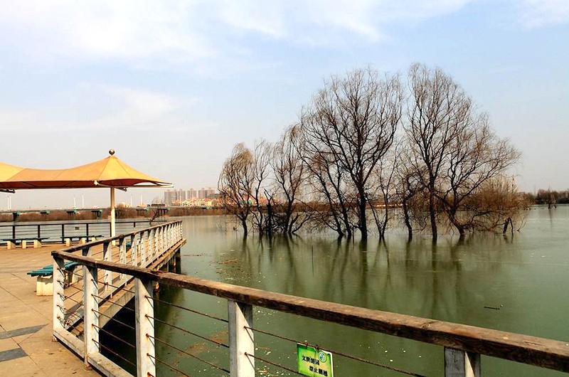 灞桥生态湿地公园二期右岸河道内景观工程V标段